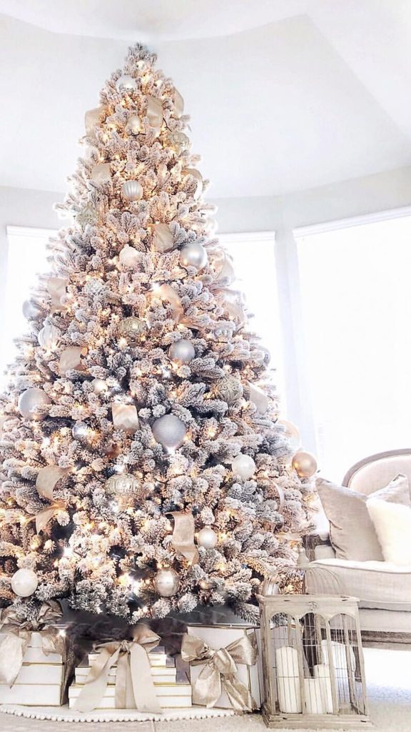 Favorite Christmas Trees of IG
