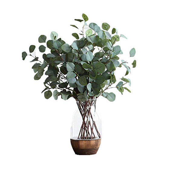 Affordable Farmhouse Spring Decor Eucalyptus