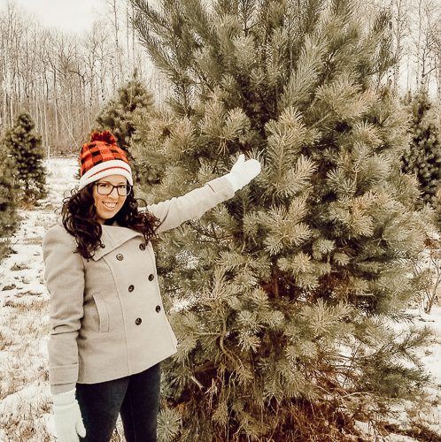My first visit to a Christmas tree farm